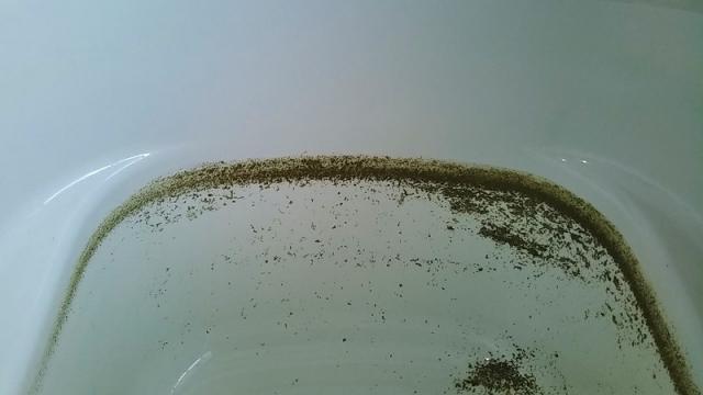 配管内から出てきた汚れ=湯垢・皮脂汚れ・雑菌の死骸など
